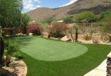 Putting Greens for Backyards Az Putting Green A Beauty Celebrity Greens Pinterest