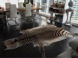 Real Zebra Rug Genuine Zebra 3 Jpg 2121a 1515 Www Sebraskinn No Sebraskinn Sebra