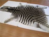 Real Zebra Skin Rug Uk 50 Elegant Zebra Cowhide Rug Pics 50 Photos Home Improvement