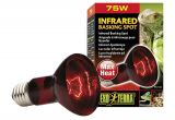 Red Heat Lamp for Chickens Amazon Com Exo Terra Heat Glo Infrared Spot Lamp 75 Watt 120 Volt