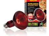 Red Heat Lamp for Dogs Amazon Com Exo Terra Heat Glo Infrared Spot Lamp 150 Watt 120