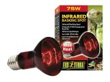 Red Heat Lamp for Dogs Amazon Com Exo Terra Heat Glo Infrared Spot Lamp 75 Watt 120 Volt