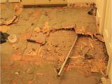 Removing Tar Glue From Hardwood Floors 22 Best Sanding Floors Images by Debbie Mankelow On Pinterest