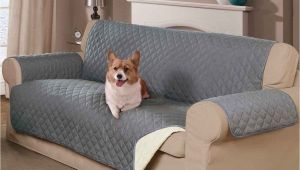 Reversible Pet Extra-long sofa Slipcover Mason Home Decor Reversible Pet sofa Cover Marleys Board