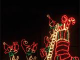 """Rope Light Palm Tree Led Animated Elf and Stocking with Controller D Džd–d"""" Džd""""dd˜"""