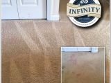 Rug Cleaning San Francisco Infinity Carpet Cleaning 53 Photos Carpet Cleaning Lillington