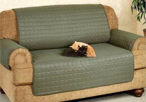 Scotchgard Furniture 29 Beautiful Scotchgard sofa is It Worth It Images Everythingalyce Com