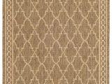 Sisal Outdoor Rugs Lowes 147 Best Indoor Outdoor Rugs Images On Pinterest Indoor Outdoor