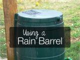 Small Decorative Rain Barrels Using and Choosing A Rain Barrel Pinterest Sustainability