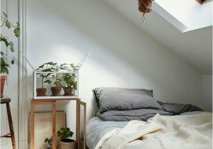 Small Loft Bedroom Ideas Fresh attic Bedroom Color Ideas Suttoncranehire