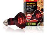 Solar Heat Lamp for Chickens Amazon Com Exo Terra Heat Glo Infrared Spot Lamp 75 Watt 120 Volt