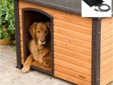 Solar Heat Lamp for Dog House Lamp Heat Lamp Dog House Elegant Dog House Peaceably Heater Tan