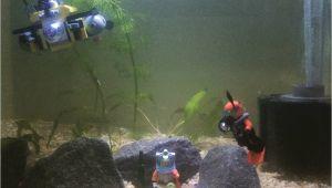 Star Wars Fish Tank Decorations for Sale New Shrimp Tank Setup Lego Fish Tank Cherryshrimp Scubadiver