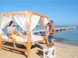 Sun Tanning Beach Chairs Albatros White Beach Hurghada Egypt Youtube