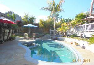 Swimming Pool Floor Padding Tropical Backyard Paradise Bring the Pets Pool Deck Spa Garden