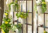 Terracotta Garden Wall Art Birdies Wall Planter Pinterest Shape Design Planters and Sunnies