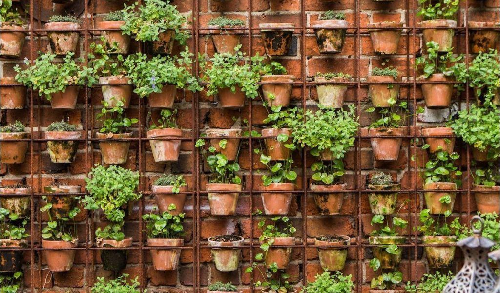 Terracotta Garden Wall Art Design Sleuth Vertical Garden Of Terra ...