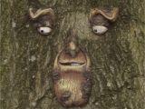 Tree Faces Garden Art Green Man In Tree Nr Whalley Lancashire for My Garden Pinterest