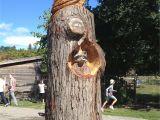 Tree Faces Garden Art Turning A Tree Stump In Cabbagetown Into Art Tree Stump Ideas