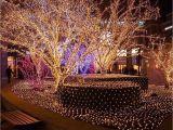 Twinkle Light Tree Light Tree Led String Lights 100leds with Eu Us Plug for Christmas