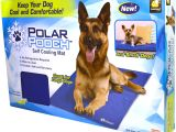Using A Heat Lamp for Dogs as Seen On Tv Polar Pooch Cooling Mat Walmart Com