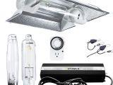 Virtual Sun Grow Lights Amazon Com Ipower 1000 Watt Hps Mh Digital Dimmable Grow Light