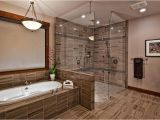 Walk In Bathtub Designs 25 Luxury Walk In Showers