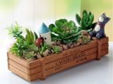 Wooden Flower Boxes Garden Plant Pot Decorative Vintage Natural Flower Planter Succulent