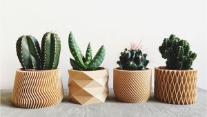 Wooden Flower Pot Homedesigning Cool 3d Printed Wooden Planters Apartmentshowcase